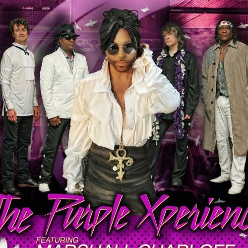 Prince - The Purple Xperience - Spar 10-20%